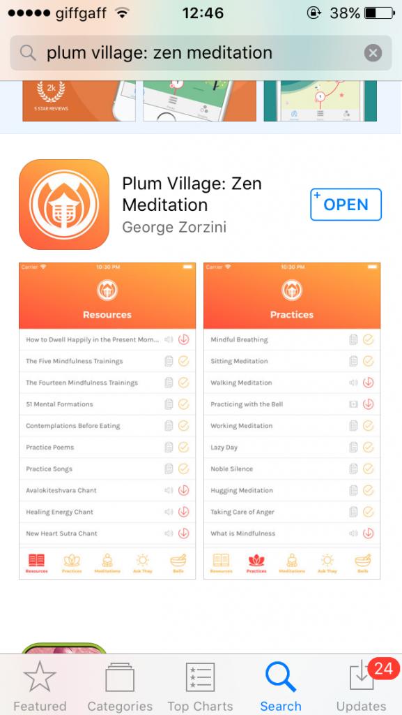App store screen shot on phone