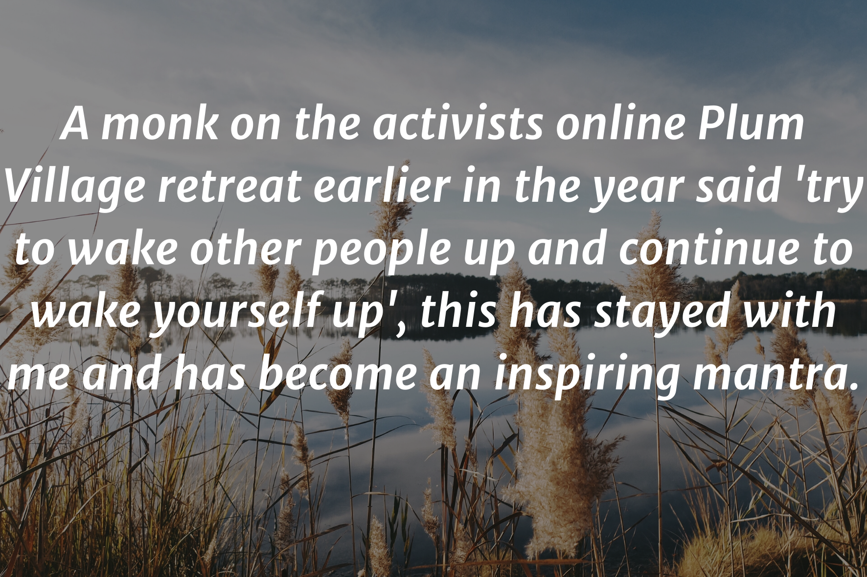 """image of a lake with text saying: """"A monk on the activists online Plum Village retreat earlier in the year said 'try to wake other people up and continue to wake yourself up', this has stayed with me and has become an inspiring mantra"""""""