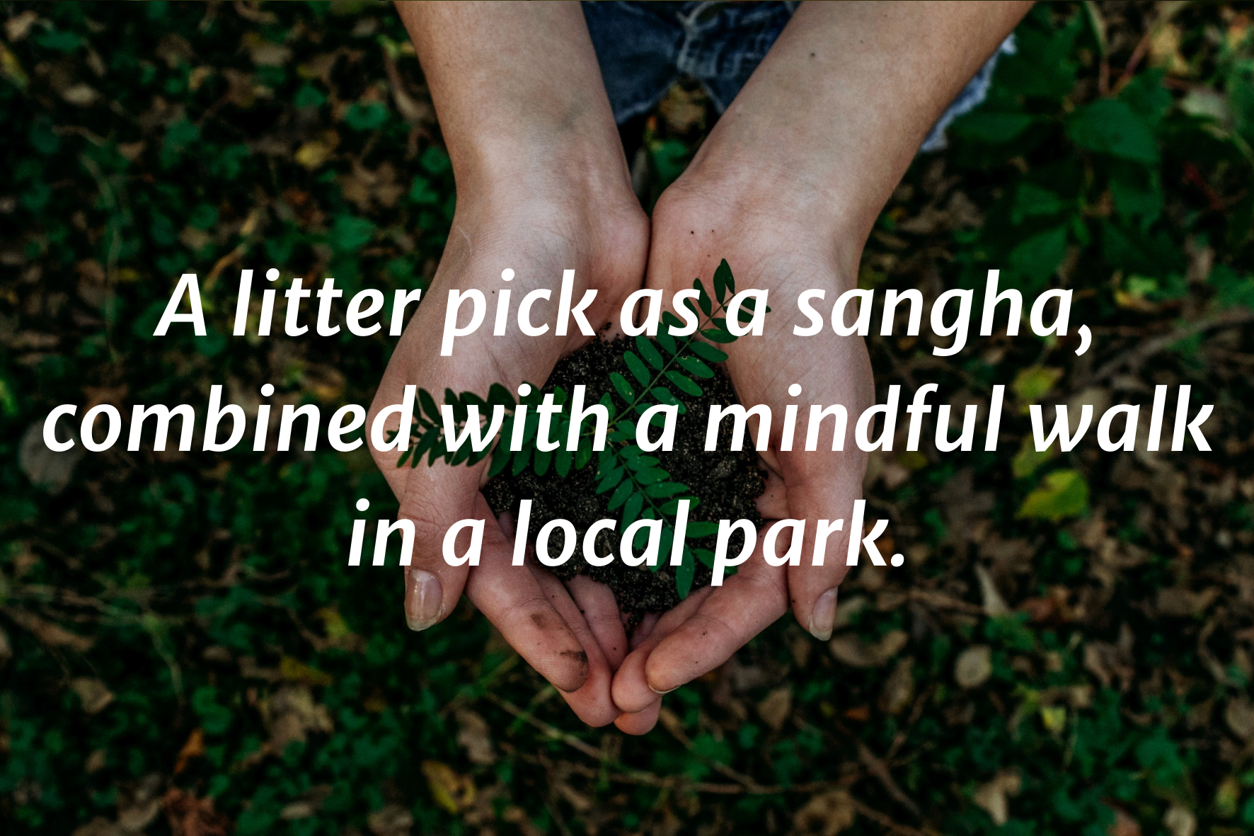 """A photo of two hands cupped, holding a handful of soil and a fern seedling. Text on top saying: """"A litter pick as a sangha, combined with a mindful walk in a local park"""""""