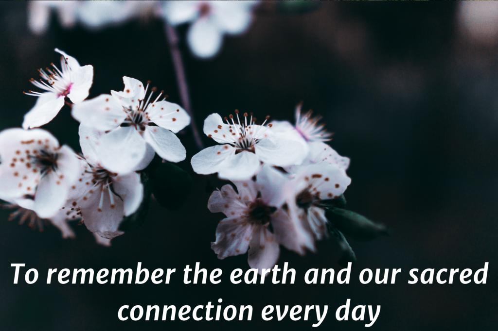 """A closeup photo of white fruit blossoms. Text on top: """"To remember the earth and our sacred connection every day"""""""